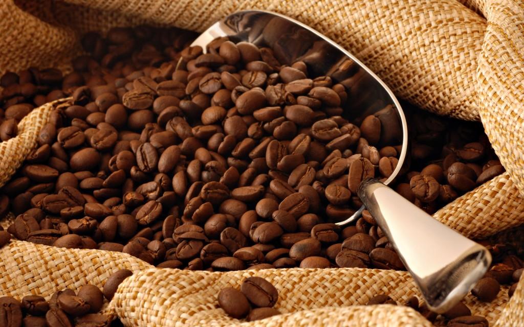 Café Orgánico, aromas y sabores que perduran