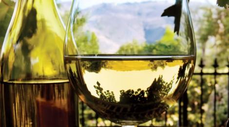 """Los vinos del """"Viejo Mundo"""""""