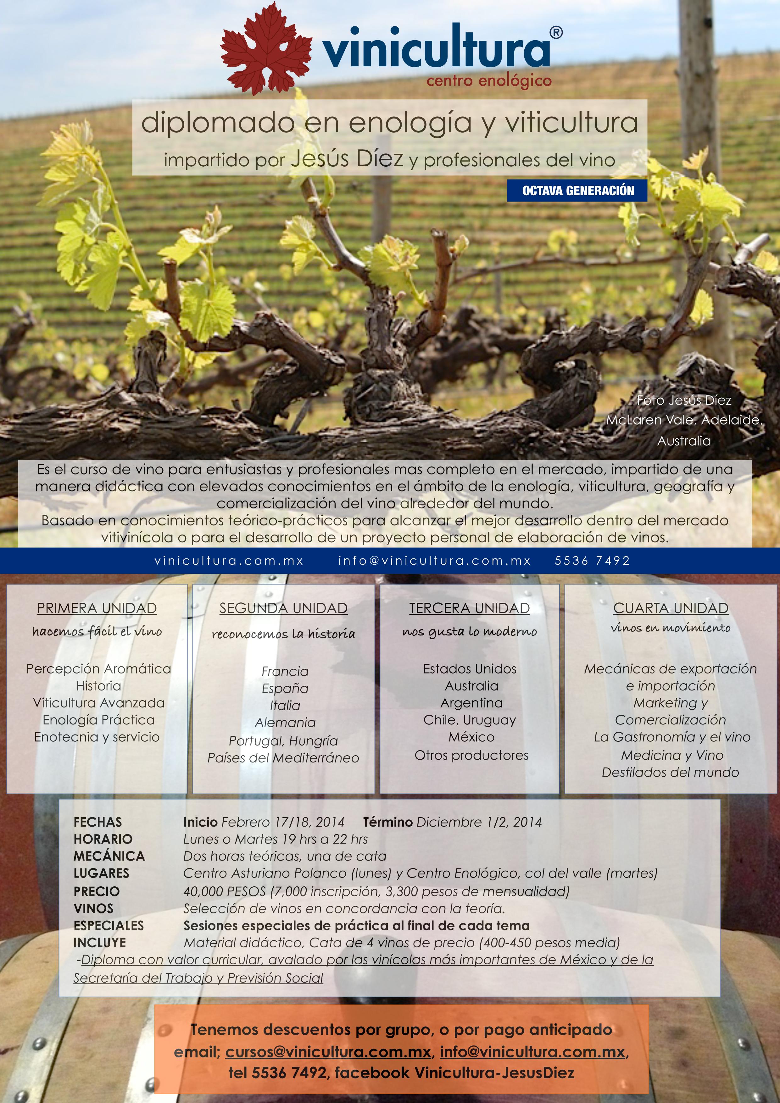 Diplomado Enologia y Viticultura