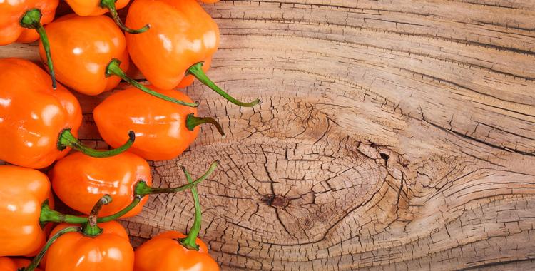 Salsa de chile habanero - Revista El Conocedor