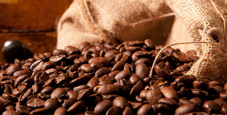 El café, entre la tradición y la innovación (Parte 2)