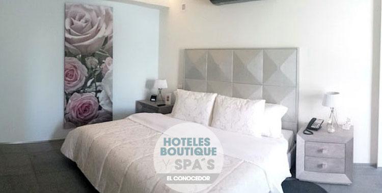 Suites Contempo – arte y confort