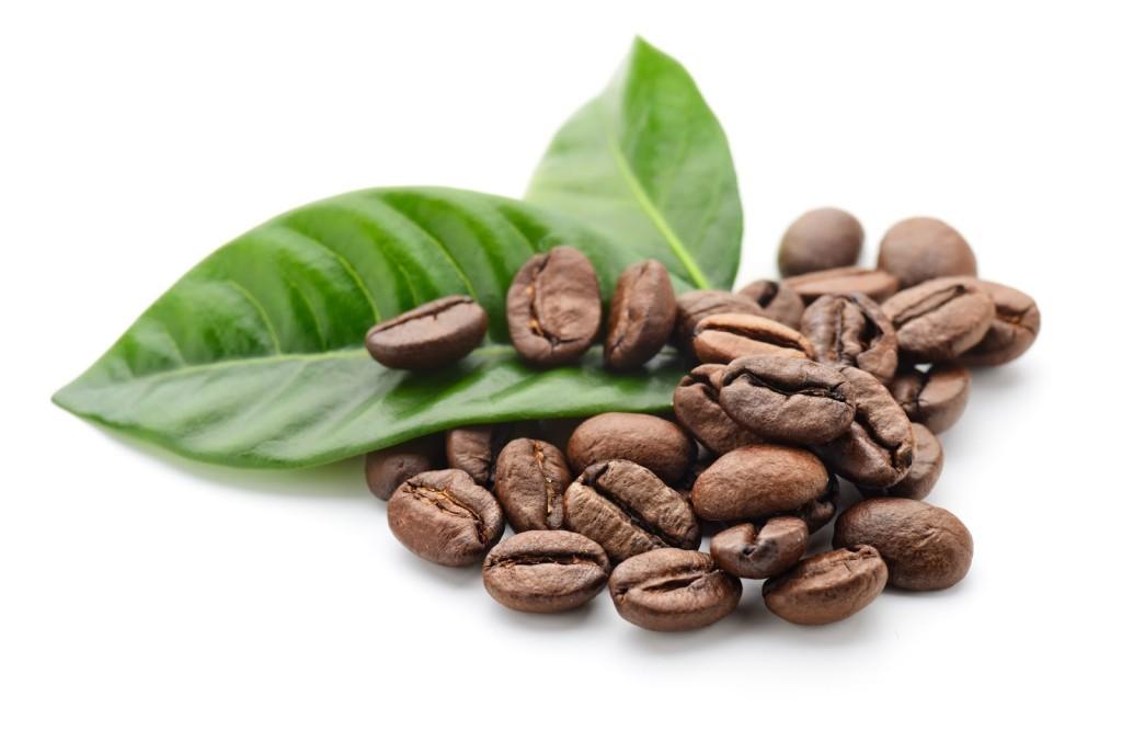 El café mexicano entre los mejores a nivel internacional