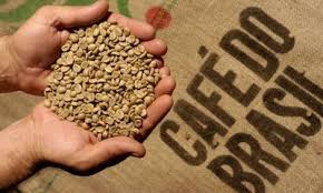 café dp brasil