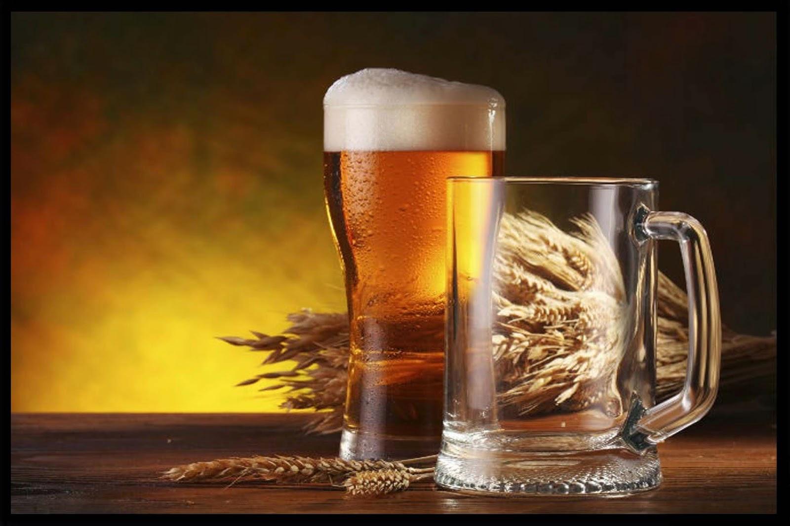 Cerveza Artesanal on Acura Rdx