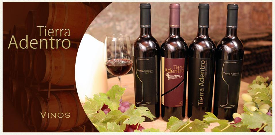 Tierra Adentro obtiene el primer lugar en cata a ciegas de vinos mexicanos.