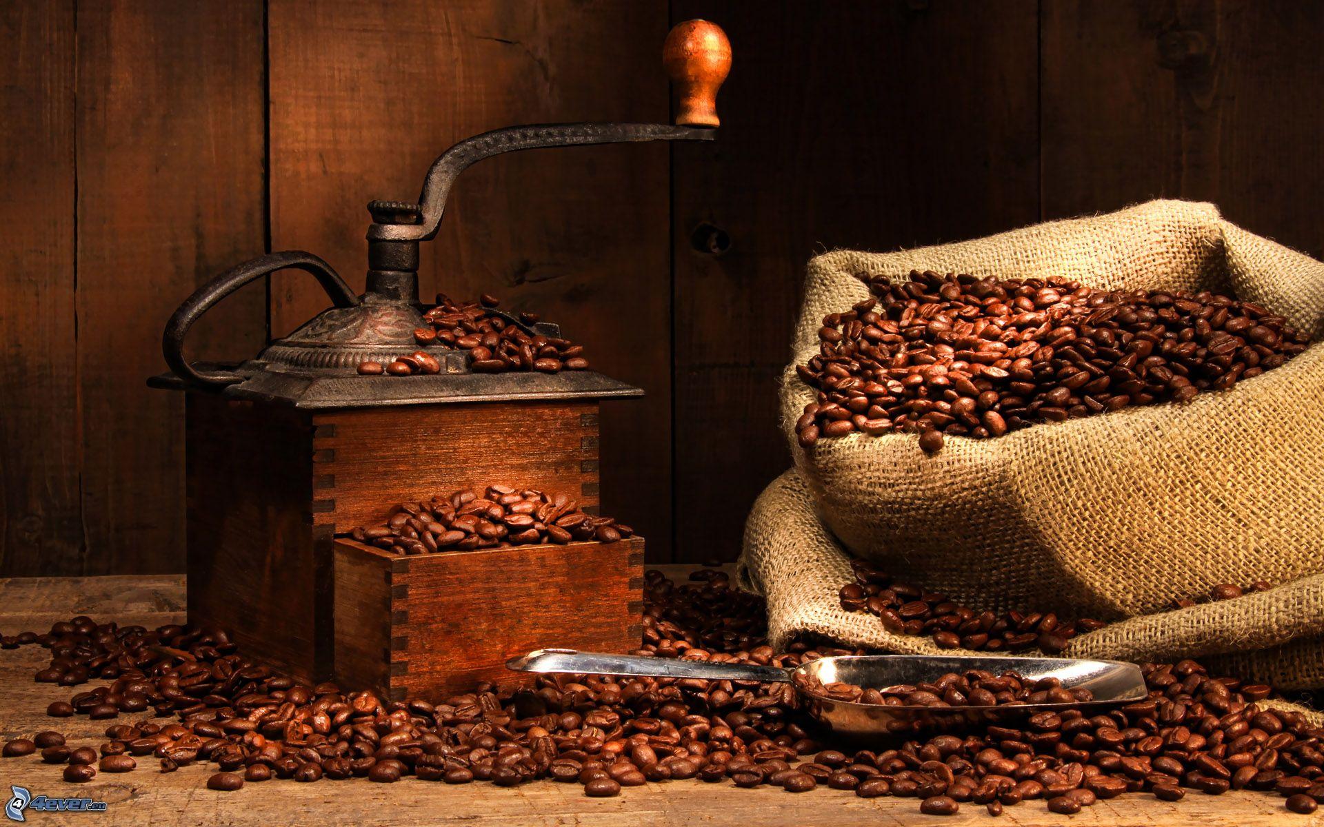 Las 11 del caf revista el conocedor - Bilder cappuccino ...