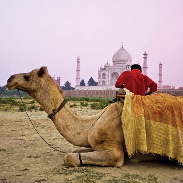 Taj-Mahal-india-622306_1024_1024