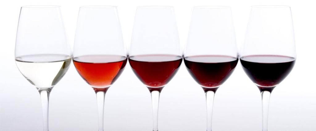 La cata de vino por partes (y sentidos)