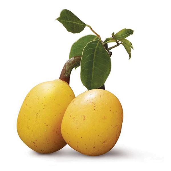 36890-hi-amarulafruit