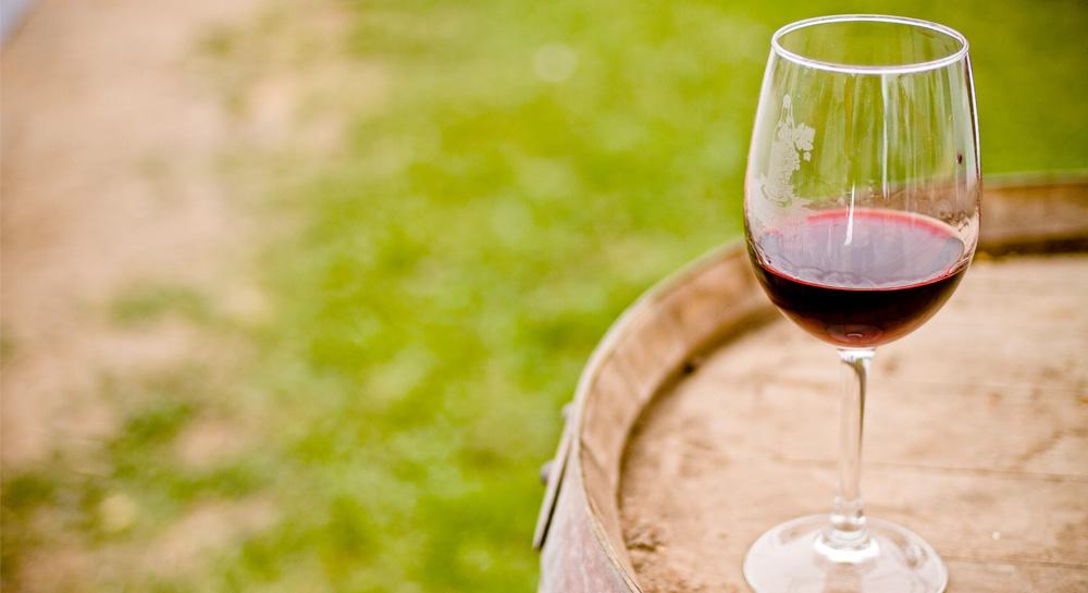 Detrás de un vino orgánico
