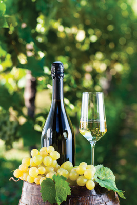 El-vinho-verde-la-frescura-de-portugal-El-Conocedor-5