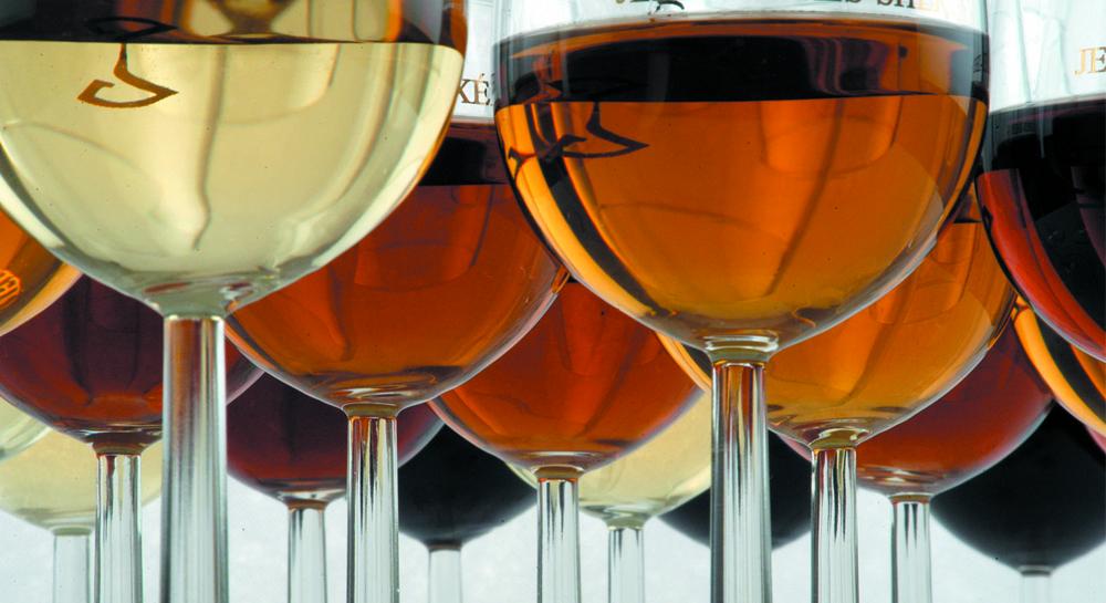 Tierras de Uva – Vinos elaborados con alma y corazón