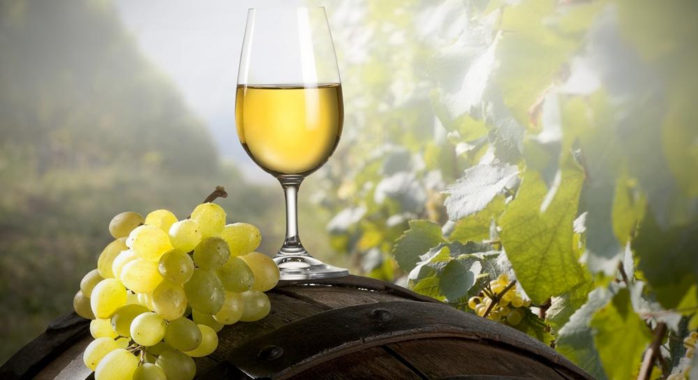 """El """"vinho verde"""", la frescura de Portugal"""