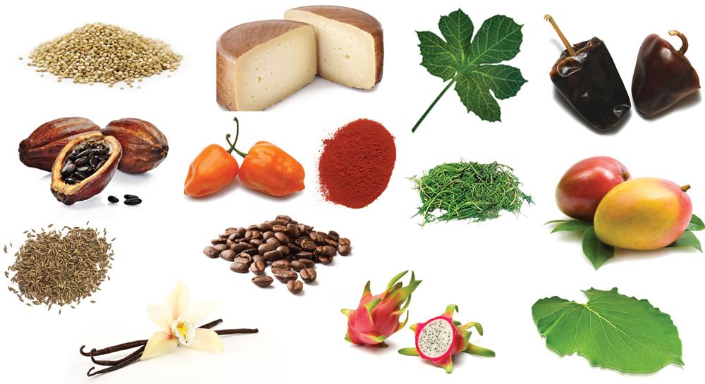 Ingredientes tesoros de m xico for Ingredientes para comida