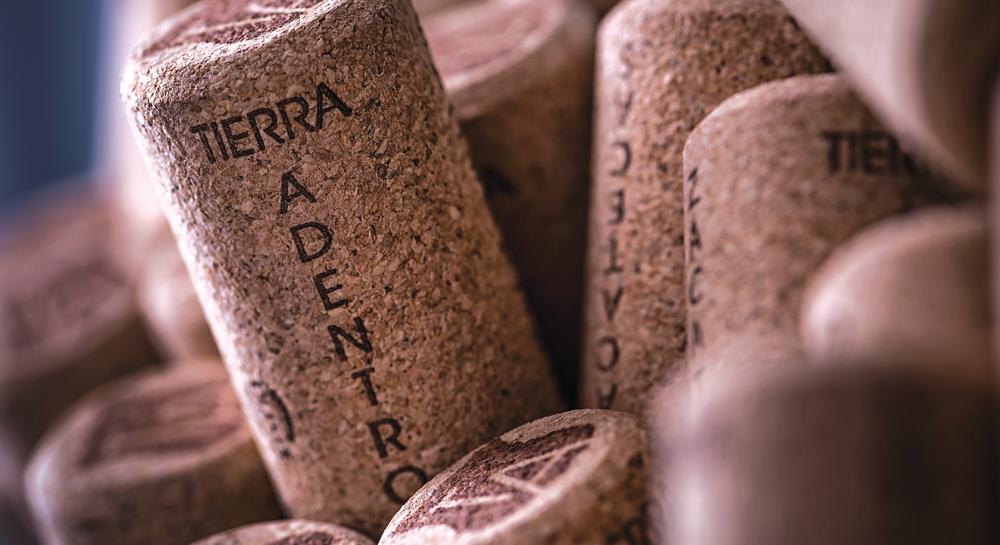 Tierra Adentro, vinícola zacatecana