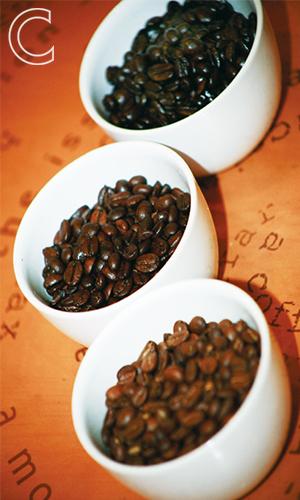 coffe tasting 3