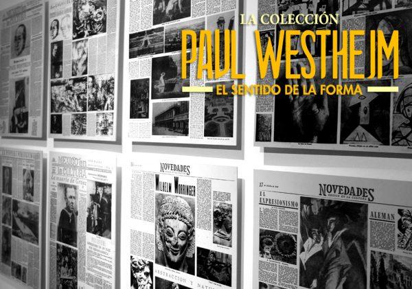 PAUL_WEB