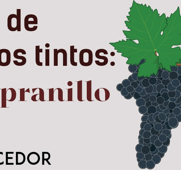 Las uvas de los vinos tintos: Tempranillo