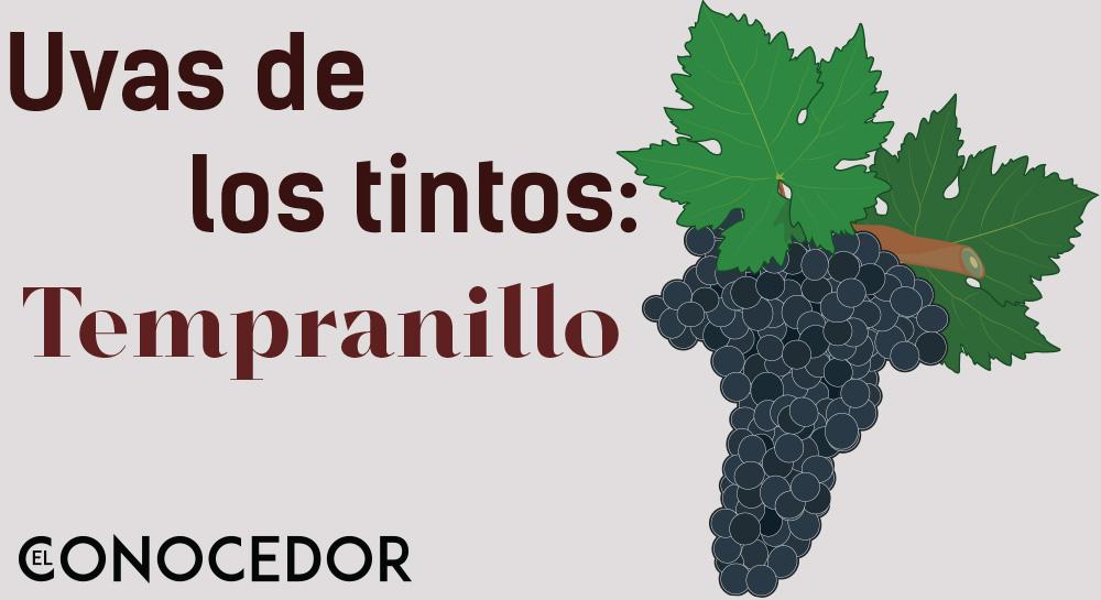 Las uvas de los vinos tintos: Tempranillo