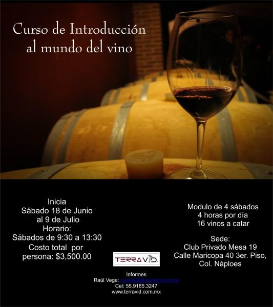 Curso de Introduccion al Mundo del Vino