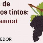 Las Uvas De Los Vinos Tintos Pinot Noir Revista El
