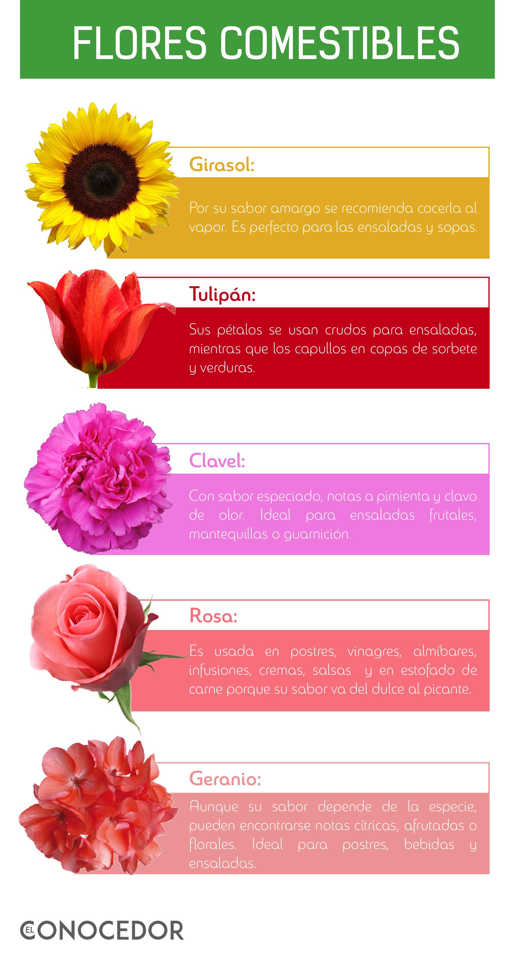 info flores-01