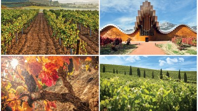 España, una historia vinícola para el mundo