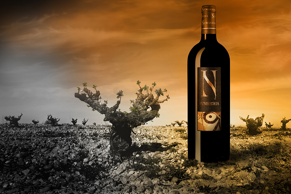 Numanthia, el vino de la Edad de Hierro