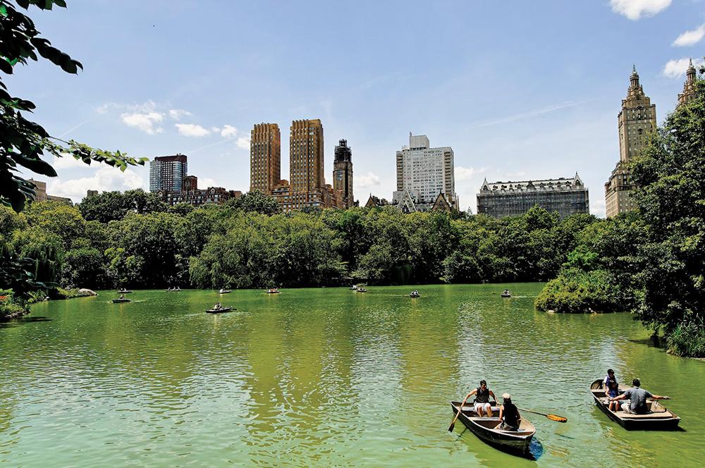 Nueva York, la ciudad con deseos de tocar el cielo (parte 2)