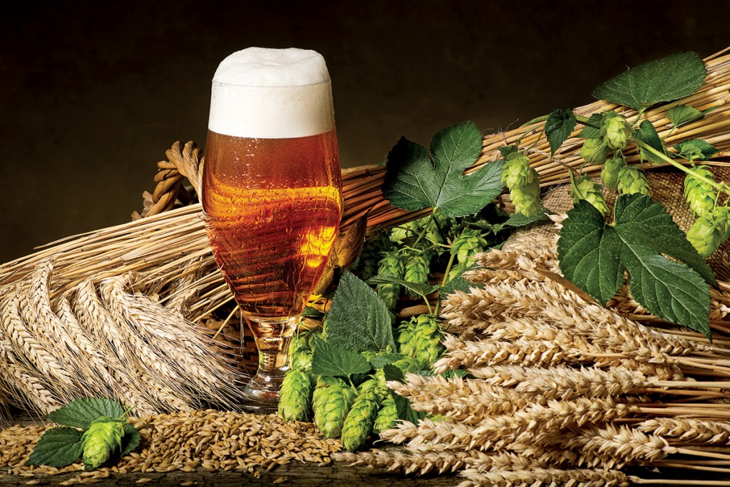 La gran historia de la cerveza
