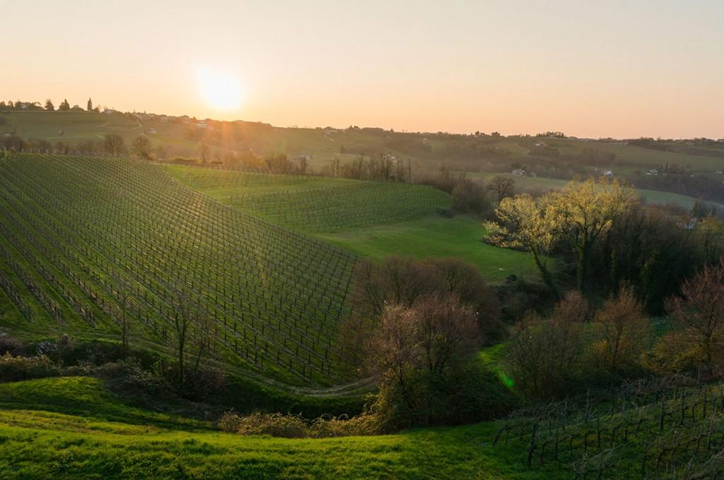 Santa Margherita, vinos italianos de tradición