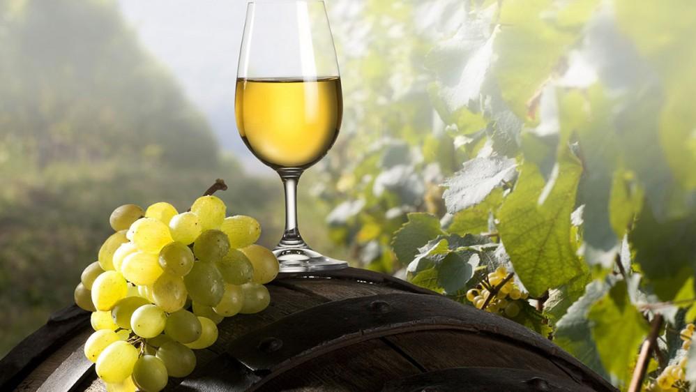 Los vinos blancos mexicanos