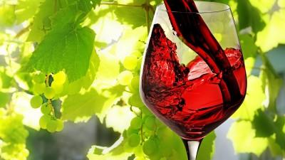 Croacia, un país de vino