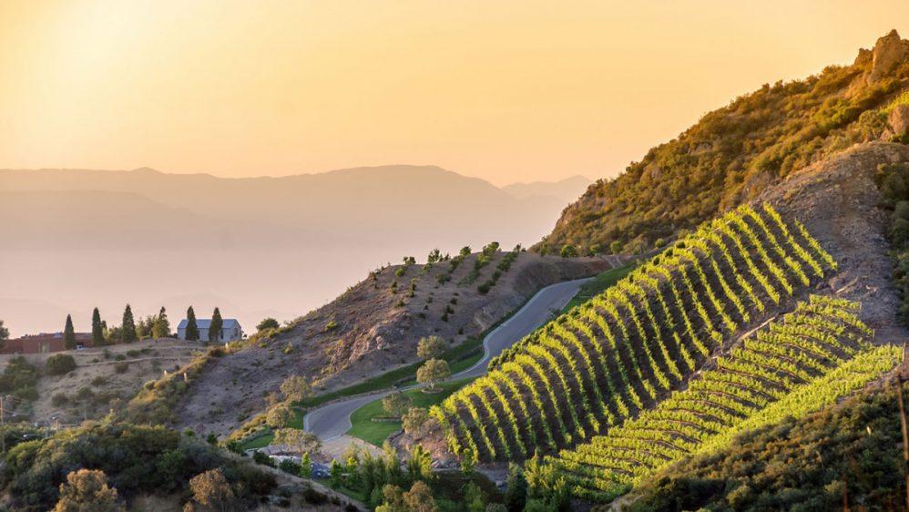 Vinos de California, terruño inigualable