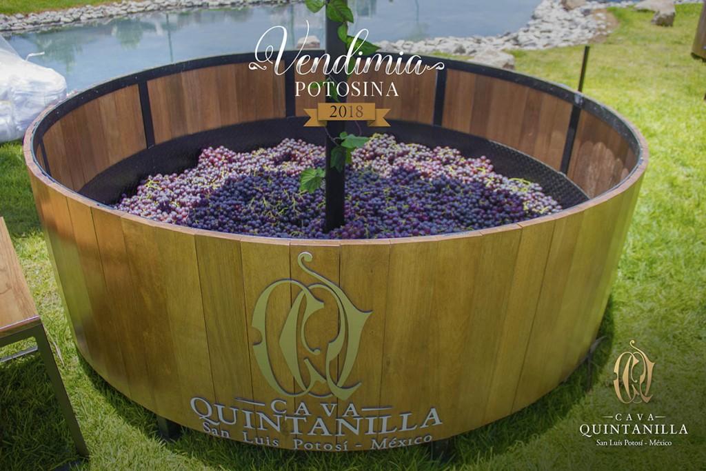 Vive La Vendimia Potosina 2018 en los viñedos de Cava Quintanilla