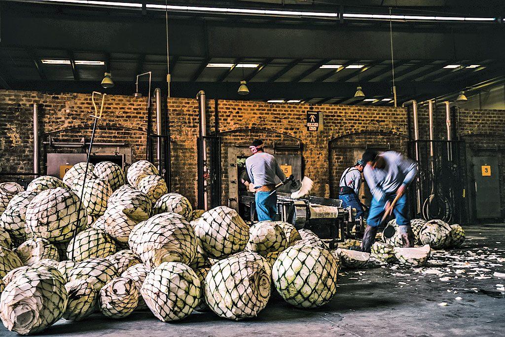 Tequila Patrón, compromiso y proceso artesanal