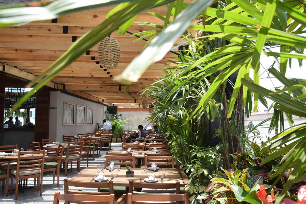 Palmares Azotea: nuestra terraza favorita.