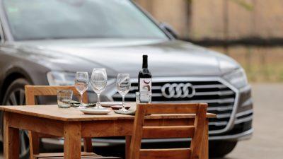 Cuna de tierra, una vinícola referente de Guanajuato