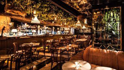 Paraísos perdidos, lo nuevo de Qu Qoo Latin Bar 🌴🥥