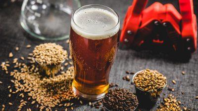 Levaduras y cerveza