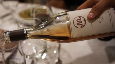 Rancho El Fortín, excelencia en vinos mexicanos