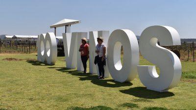 ¡Ya viene el 11º Festival 100 Vinos Mexicanos 🍷!