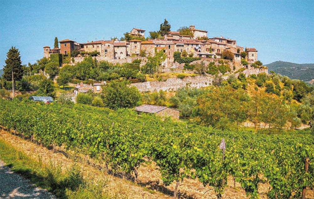Italia, mosaico interminable de vino