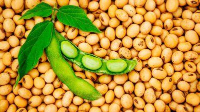 Por nuevo etiquetado, sube el consumo de productos orgánicos