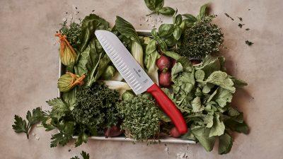 Pusimos a prueba el nuevo cuchillo de Victorinox: Santoku Swiss Classic 🔪