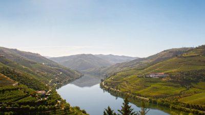 Portugal: un mundo enológico por conocer
